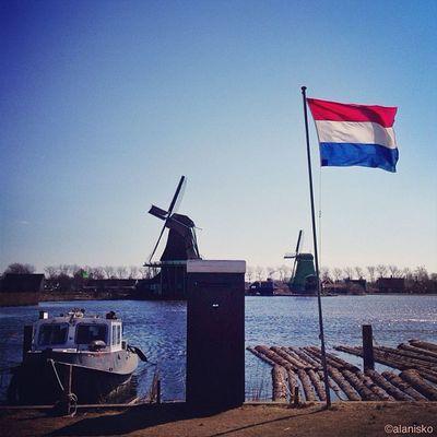 Dutch Romance ?☀?? #ic_cities #igholland #worldwidephotowalk #igersholland #insta_holland #mokummagazine #gf_daily #gang_family #gramoftheday #holland #worldwidephotowalk #gramoftheday #kewikihighlight_bestsofar #windmill #piclab Insta_holland Holland Igholland Windmill Gang_family Gf_daily Igersholland Piclab Ic_cities Gramoftheday Worldwidephotowalk Kewikihighlight_bestsofar Mokummagazine
