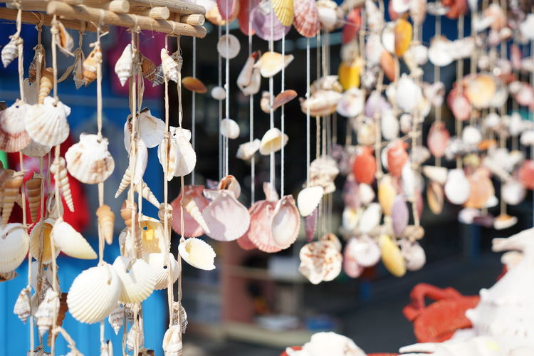 Seashells Hanging Market Retail  For Sale Close-up