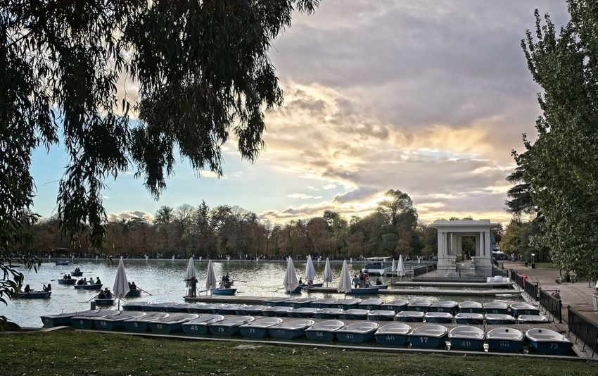 El Retiro pond Tree Sky Water Outdoors Pond Boat Rowing Boat Madrid City Life Travel Tourist Attraction  Tourism Travel Destinations People Vacations Real People El Retiro Pier