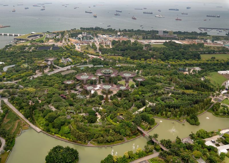 Marina Garden by the Bay Overview Plant Tree High Angle View Architecture Building Exterior Built Structure Nature Aerial View City Day Cityscape Growth No People Water Building Outdoors Land Residential District Green Color
