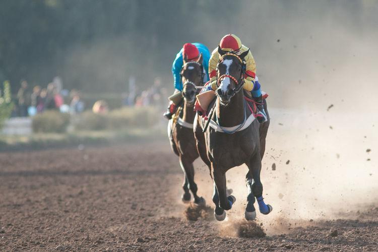 Men riding horses on field