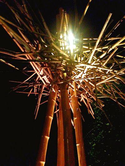 Learn & Shoot: Single Light Source Night Light Bamboo Decoration Restaurant Interior Design Travel By Puk✈️ Eye4photography  Streetphotography