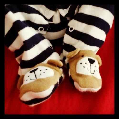 Sweet puppy dog feet Precious Happybabyfeet