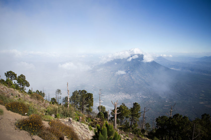 View from the summit of Acatenango volcano, near Antigua, Guatemala. Acatenango Antigua Guatemala Blue Day Guatemala Landscape Mountain Mountain Peak Nature New York No People Outdoors Pine Woodland Sky Travel Destinations Tree