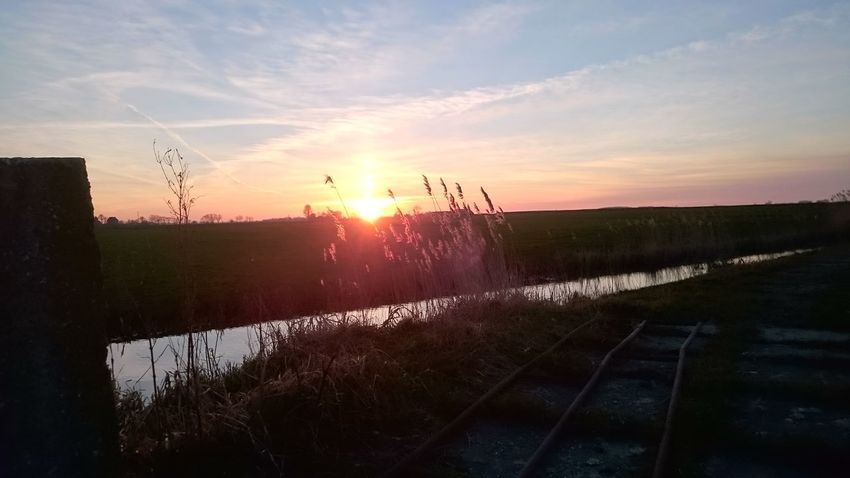 Sunset Water Sky Outdoors Nature No People Landscape Green Color Grass
