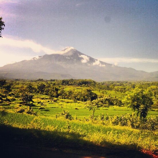 Nature Montain  Green Pacet Mojokerto Eastjava INDONESIA