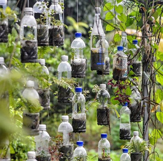 Singapore likes to push the Ecofriendly atmosphere by showing off their garden of terrarium.