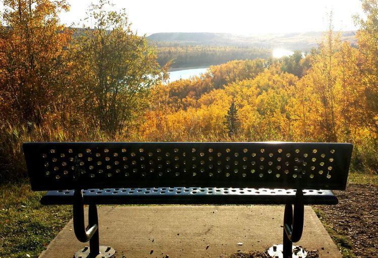☆ Relax and take it all in ☆ Relax Fort McMurray Ymm Fall