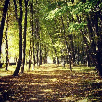 Walked in the Park today Vinnitsa Vnua Photooftheday autumn igukraine