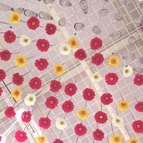 Flowers Hanging Ceiling Bottle Indoors  Pattern Interior Design