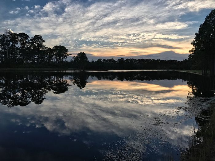 Reflections Jax Florida Pond Life Country Living Woods Reflections Sunset Sunlight And Shadow Shadows Clouds Dirt Road Nofilter God Is Good Beauty In Nature Beautiful Creation
