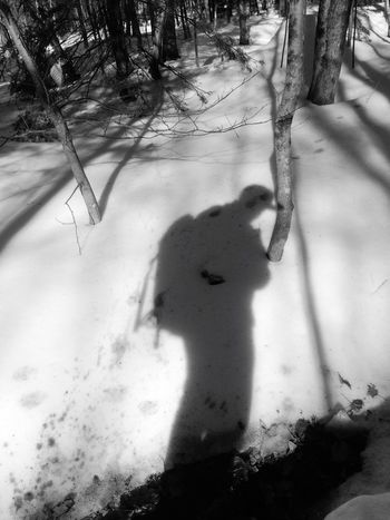 Winter Snow Cold Temperature Real People Unrecognizable Person Tree Lifestyles One Person Leisure Activity Day Outdoors Nature Human Body Part People Maine Shadow Hikingadventures Woods