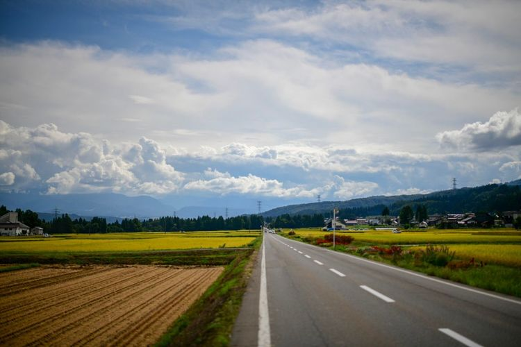Stay on these roads. また、一緒にこの道を歩きたい。変わらないでいて欲しい。 Road Sky Cloud - Sky Transportation Direction The Way Forward Landscape Environment Beauty In Nature Scenics - Nature Nature Land Symbol Tranquil Scene Plant Rural Scene No People Field Day Road Marking