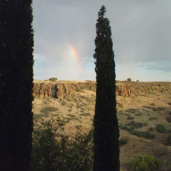 Morning rainbows. Light And Shadow Rainbow Trees EyeEm Nature Lover Nature Nature_collection Naturelovers Eye4photography  Arcosanti Capture The Moment Sky And Clouds Sky No People Deserts Around The World