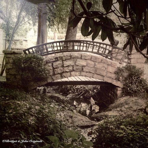 Finding our way. Bridge Bridges Park Scenery Scenic Hidden Beautiful Places Taking Photos Relaxing