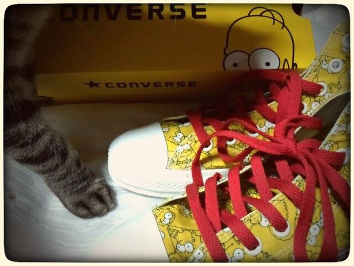…jil in.(〃ω〃)The Shmpsons Converse