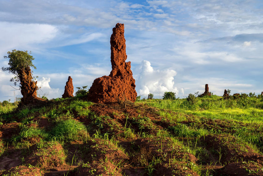 Africa Colors Congo Documentary Exploring Exploring New Ground Full Frame Grass Journey Landscape Nature Outdoors Photojournalism Real People Reportage Showcase: December Taking Photos Termites Tranquility Travel Travel Photography Traveling Travelling Voyage