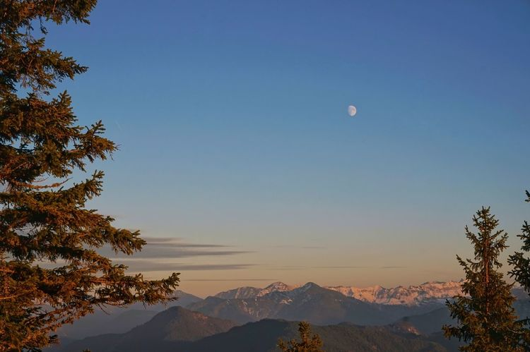 Alps Germany Tree Landscape Nature Moon Scenics Mountain Sky Outdoors Sunset Flying Travel Destinations Clear Sky Beauty In Nature Night People