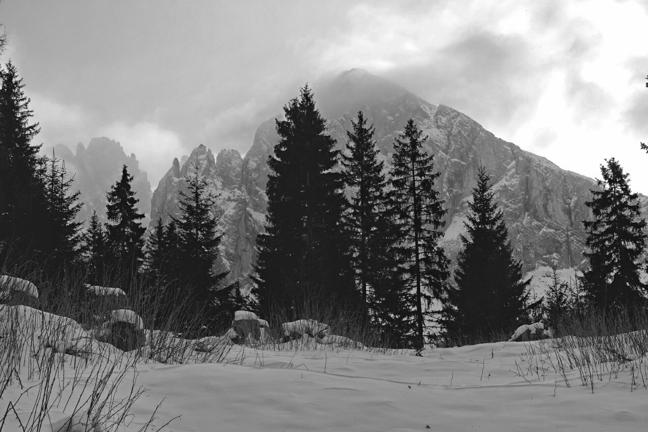 Dolomites, Italy Mountains Rocky Mountains Trees Clouds And Sky Black & White