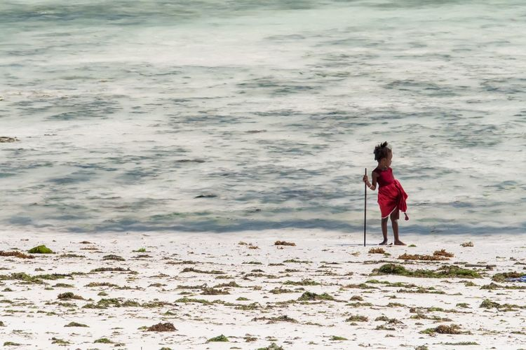 Full Length Of Girl Holding Stick While Standing At Beach