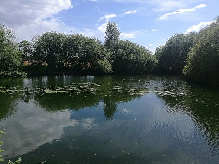 Reflection Water Lake Pond Outdoors Nature Scenics Landscape Cloud - Sky Sky Day Sunny Day Clouds Clouds Reflections On Water Sky Reflection Wetland Centre London Wetland Nature Reserve Tree Reflection  Tree Lake Reflection P9 Huawei Outdoor Photography Wetlands Sky Clouds