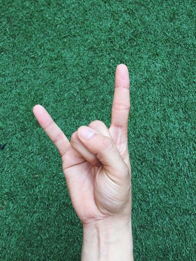 Gesture Ok EyeEm Selects Human Hand Human Body Part Hand Grass Body Part Finger Gesturing Nature Real People One Person Personal Perspective Human Finger Unrecognizable Person High Angle View Outdoors Green Color Field Lifestyles Growth