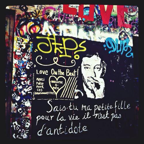 Writing On The Walls Stree Art Graffiti Gainsbourg