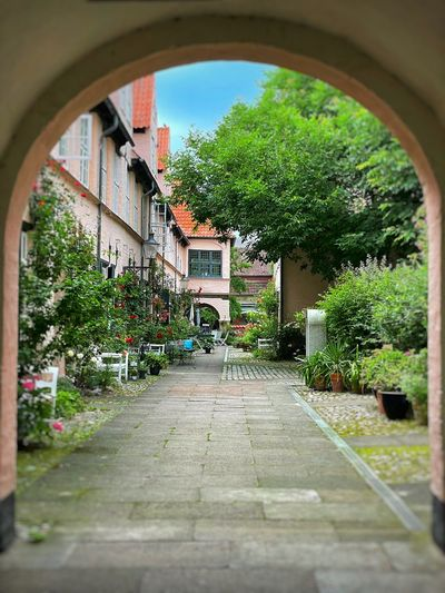 Street amidst trees and buildings seen through arch