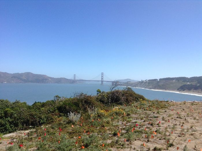 Bay Area Beach Beauty In Nature Bridge - Man Made Structure California Clear Sky Connection Copy Space Day Golden Gate Bridge Lifestyle Mountain Mountain Range Nature No People Norcal Outdoors Plant San Francisco Scenics Sea Tranquil Scene Tranquility Travel Water