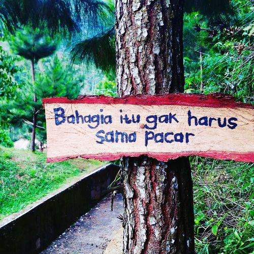 No womaine no cray Text Communication Western Script Day Outdoors No People Nature Tree Panoramaalamindonesia INDONESIA Mobail Photo Indonesia_photography Kuninganjabar