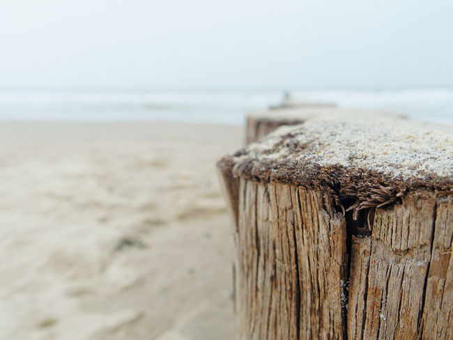Beach Claudetheen Close-up Focus On Foreground Horizon Over Water Nature Sand Sea Seaside Sky Vintage Water Waterfront Winter Wood - Material