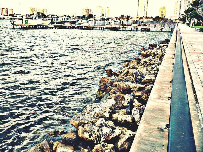 Taking Photos Docks SingerIslandFlorida Waterfront