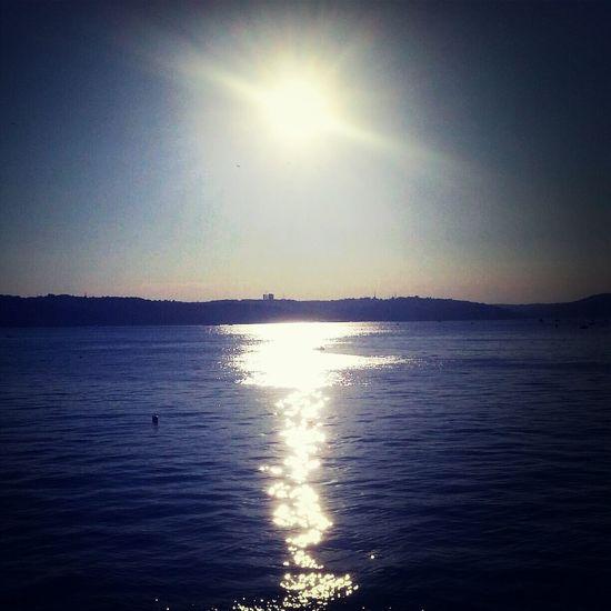 Natural Sea Side Enjoying Life Silhouette