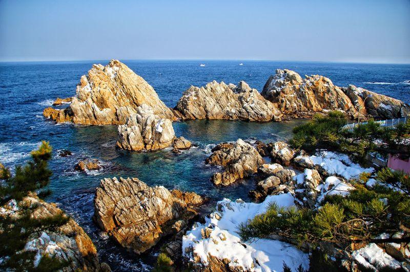 겨울바다 겨울 바다 나무 아름다운 자연 평온한 Water Sea Beach Sea Life Rock - Object Blue Sky Horizon Over Water