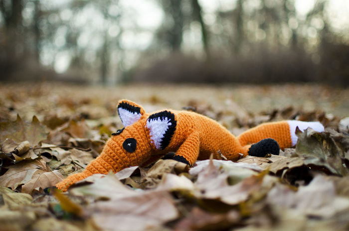 Animal Themes Animal Wildlife Animals In The Wild Bokeh Children's Toys Close-up Creative Creative Hobby Crochet Crochetanimal Day Forest Fox Nature No People One Animal Outdoors Selective Focus Tree Yarn