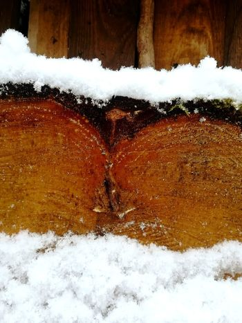 Wood Forms Wood - Material Wood Wood Snow Snow Winter Day Nature No People Outdoors