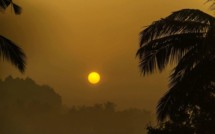 Sunrise on a