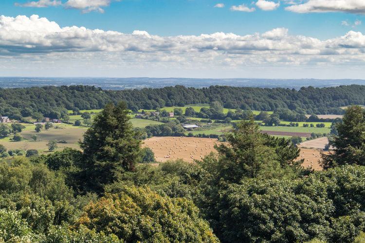 View of Shropshire // Cloud - Sky Nature Sky Scenics No People Landscape Outdoors Growth Day Field Tree Agriculture Beauty In Nature Tranquility Plant Rural Scene Shropshire Countryside Stock Image Naturelovers Nature_collection Nature Photography Natural Beauty EyeEm Gallery EyeEm Best Edits