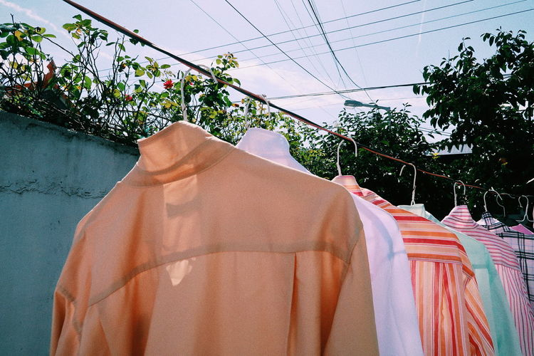 Clothes Drying On Clothesline Against Trees