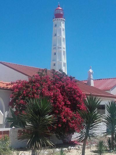 Ilha do Farol, Algarve - Portugal ,First Eyeem Photo Lighthouse , Farol Island Portugal