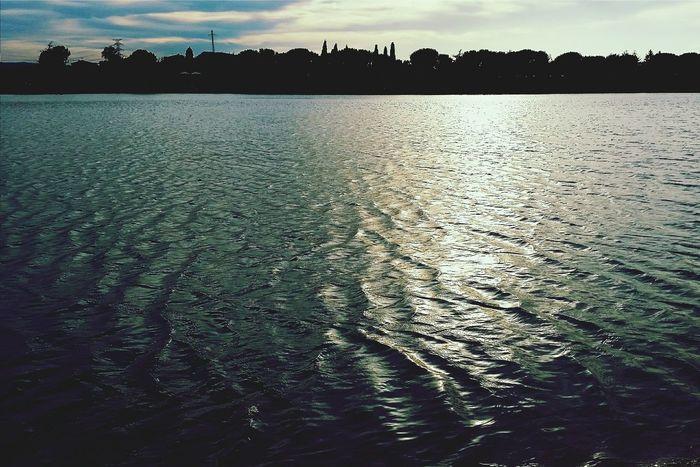 Lake Parc De L'Agulla  Water_collection Landscape_Collection I Love My City
