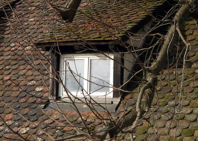 Roof Attic Mansard