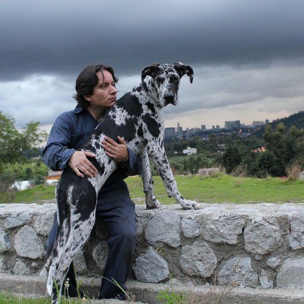 Siempre seras tu! Días Nublados Gran Danes Loula Dogs Blackandwhite People Men Outdoors One Person Moment Mexico Sky Pet Portraits