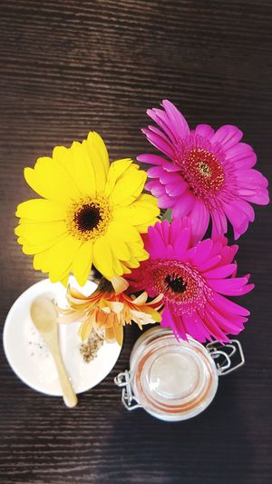 Indoor Photography Flowers Table Decor Cafe Table Contrast Gerbera Daisy Multi Colored