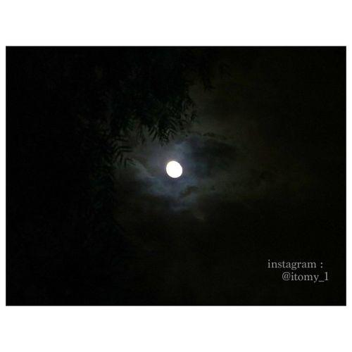 Photograph Photoggraphe