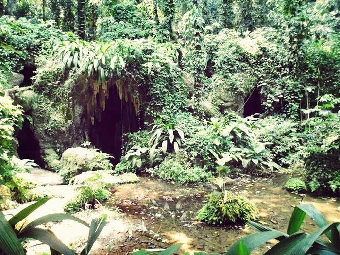 Gruta Cave Parquelage RJ