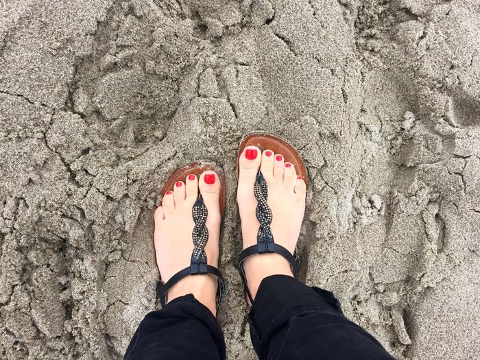 A walk at the Oregon beach in the fall Low Section Standing Red Toes Lincoln City, Oregon September 2016 Red Nails Feet On Sand Wet Sand Sandals On Sand Human Body Part Personal Perspective Directly Above Human Leg One Person Adult Nail Polish Women Adults Only Only Women Outdoors Day People One Woman Only Flip-flop Lieblingsteil