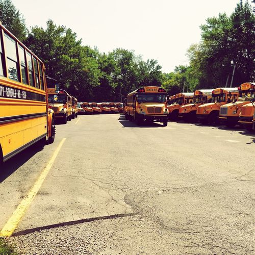 Parked school busses