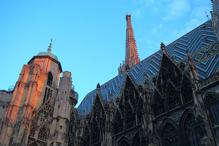 Architecture Blue Building Exterior Cathedral Church City City Sunset City Views Outdoors Religion Sky Stephansdom Sunset Sunset_collection Taking Photos Tower Travel Destinations Vienna Vienna City Wien