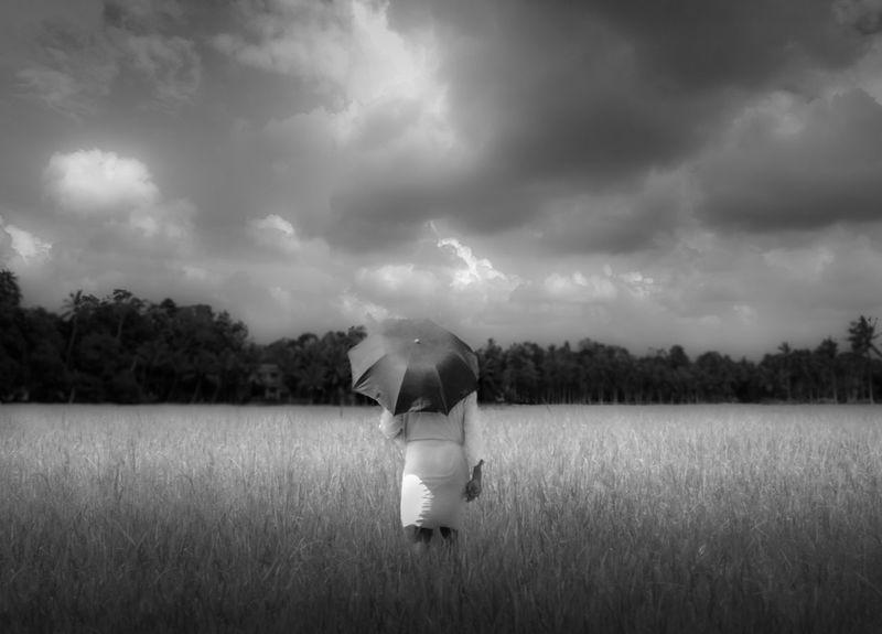 Scenery Potrait Alone Paddy Field Manwithumbrella Cloudy Day Blackandwhite Kerala Indian Nikon